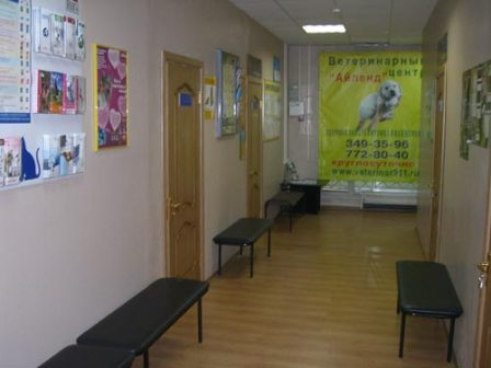Шамовская больница казань история истории