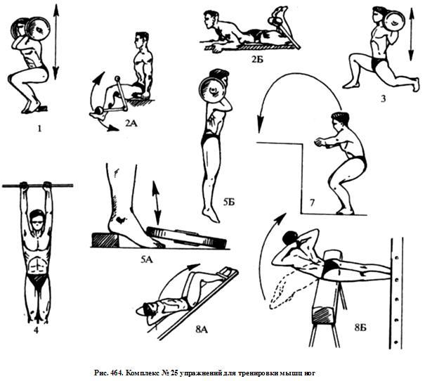 Упражнения для бега в домашних условиях 62
